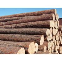 寻求木材进口清关货代